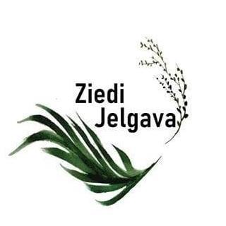 Ziedijelgava.lv